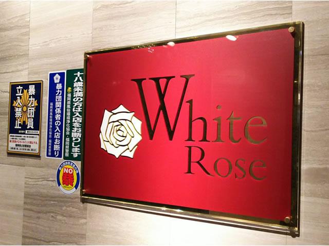 White Rose ホワイトローズ